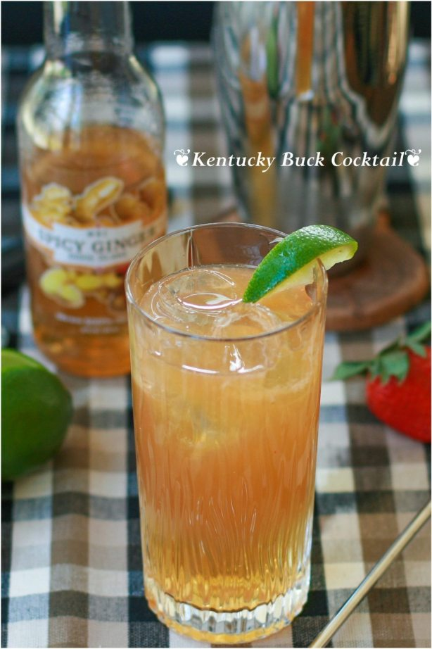Bourbon, Spicy Ginger, Lime Juice, Strawberry, Bitters