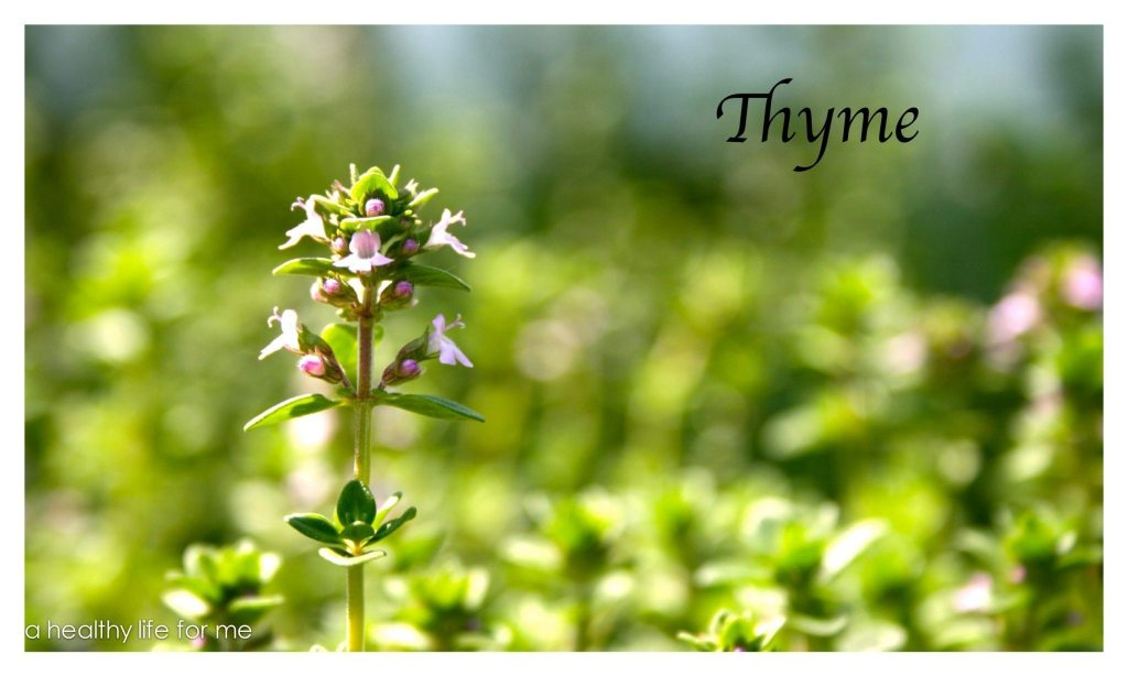 Thyme growing in the garden at www.ahealthylifeforme.com