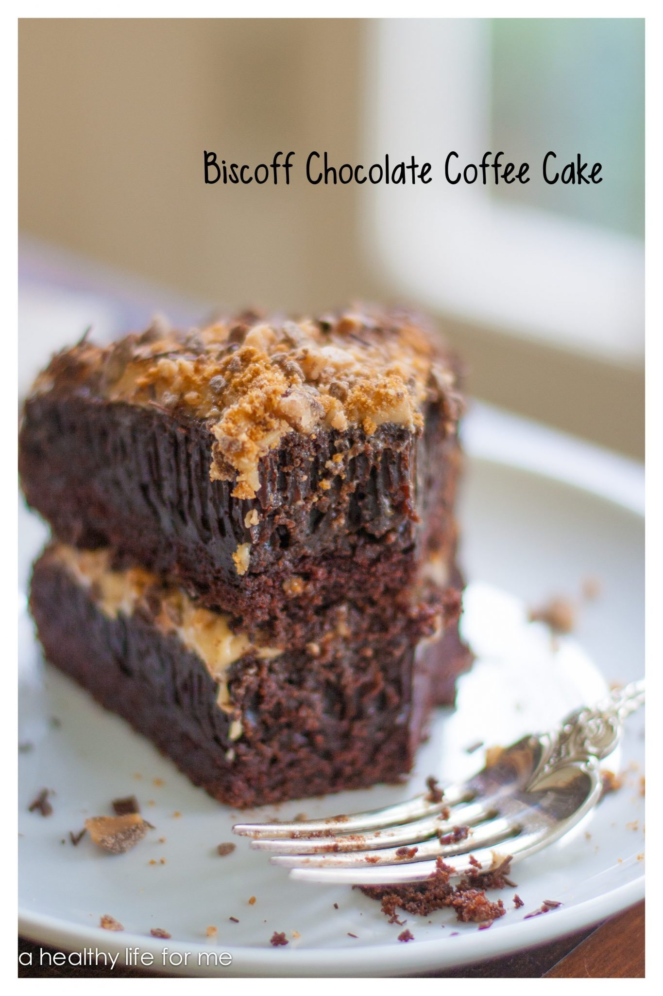 chocolate coffee cake biscoff chocolate coffee cake a healthy for me 2858