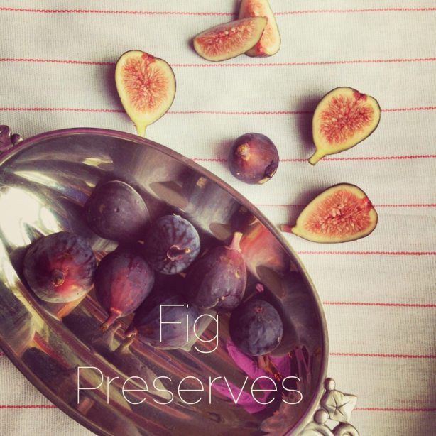 Fresh Figs to make Fig Preserve