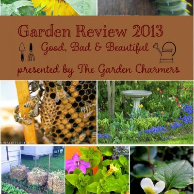 Gardening Roundup Year in Review