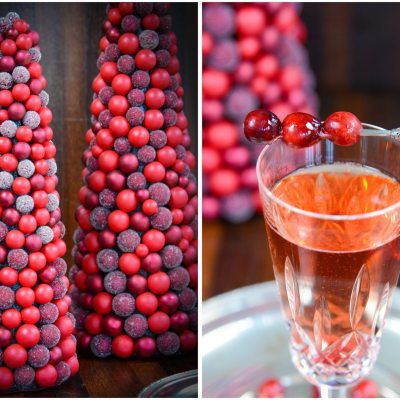 Sparkling Cranberry Rose Cocktail