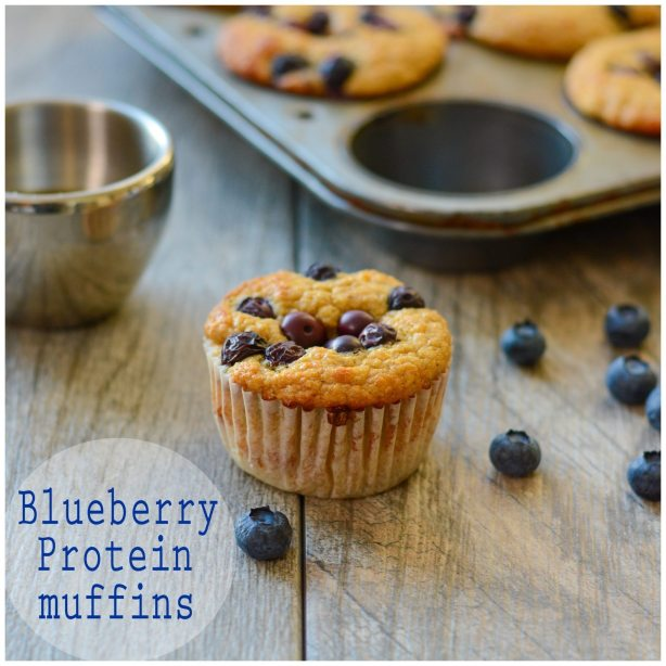 Blueberry Protein Muffins Low Calorie High Protein
