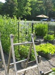 Vegetable Gardening with Raised Beds How To