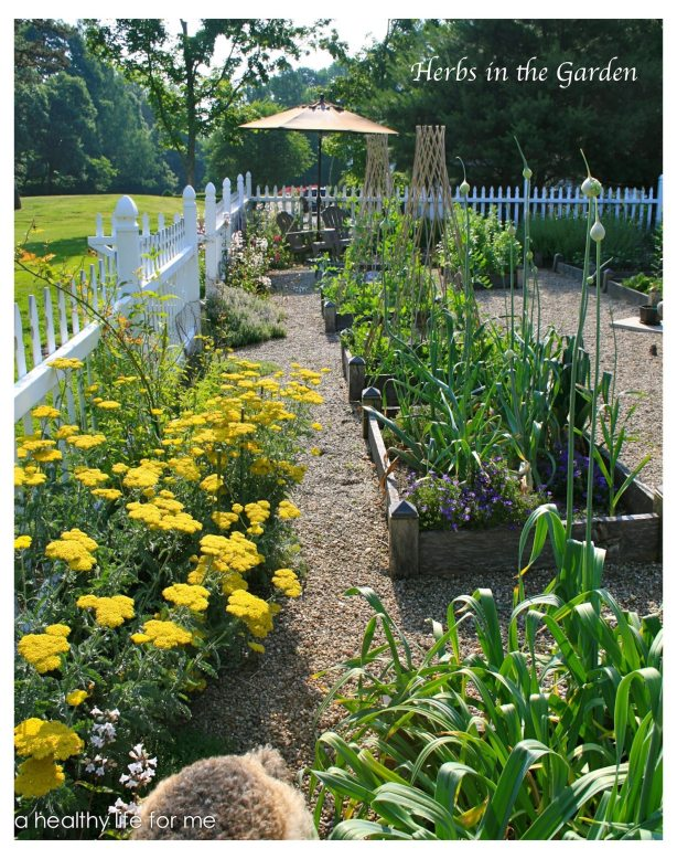 Gardening with Raised Beds How To | Planning Ideas for your Vegetable Garden
