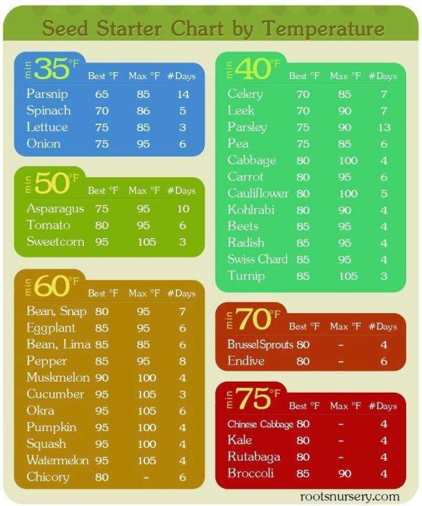 Soil Temperatures for Planting Your Spring Vegetable Garden