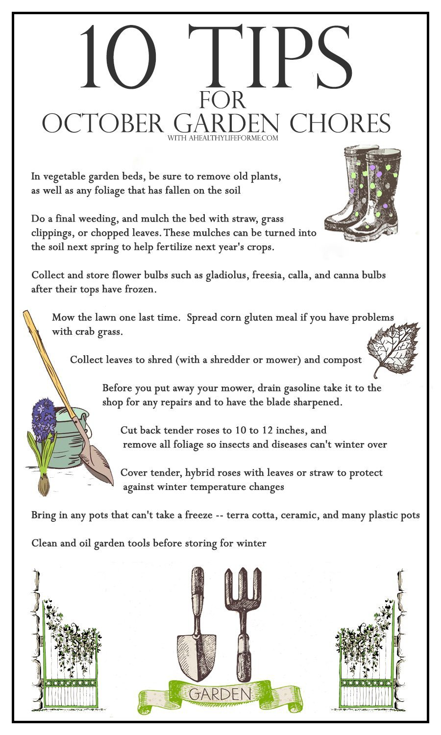 10 tips for october gardening a healthy life for me