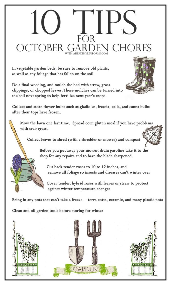 10 tips for october garden chores | ahealthylifeforme.com