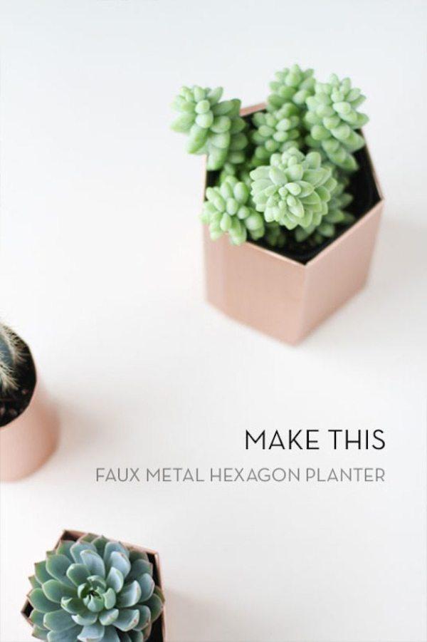 make-this-hexagon-planter_large_jpg