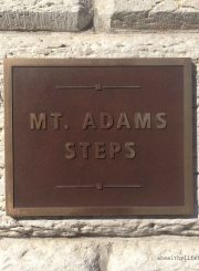 mt adams steps plaque