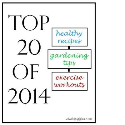 Top 20 Posts of 2014