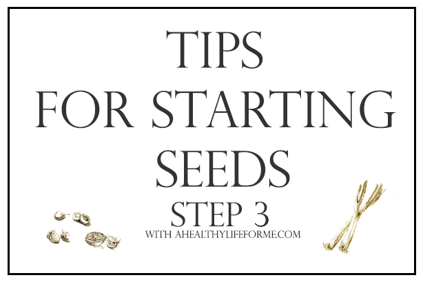 Tips for Starting Seeds Step 3 Transplanting | ahealthylifeforme.com