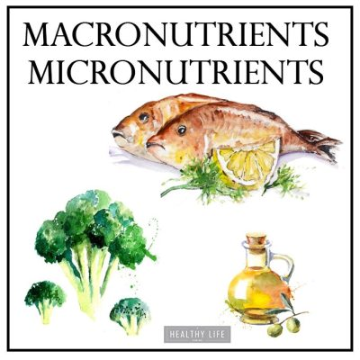 What are Macronutrients and Micronutrients