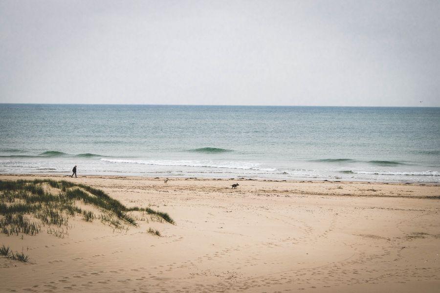 شاطئ مفتوح في فرنسا مع رجل وكلب