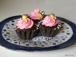 Bumblebee cupcakes and ceramic plate I bought @ The Garden Day