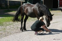 My sister and her horse IMG_5699C