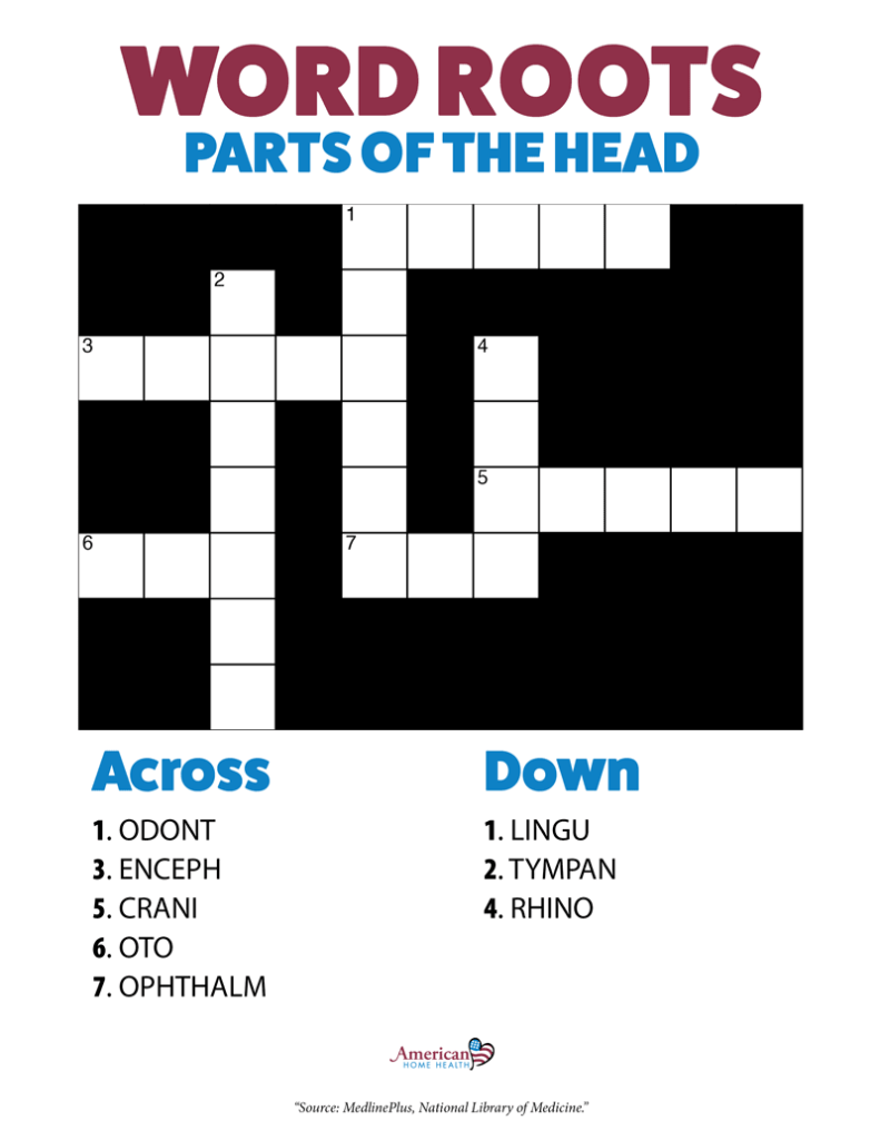 Word Roots Parts of the Head Crossword Puzzle