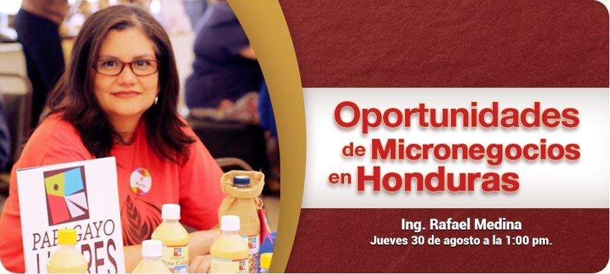 Webinar Oportunidades De Micronegocios En Honduras