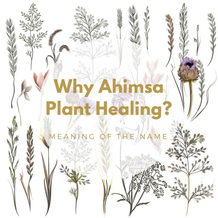 Why Ahimsa Plant Healing?