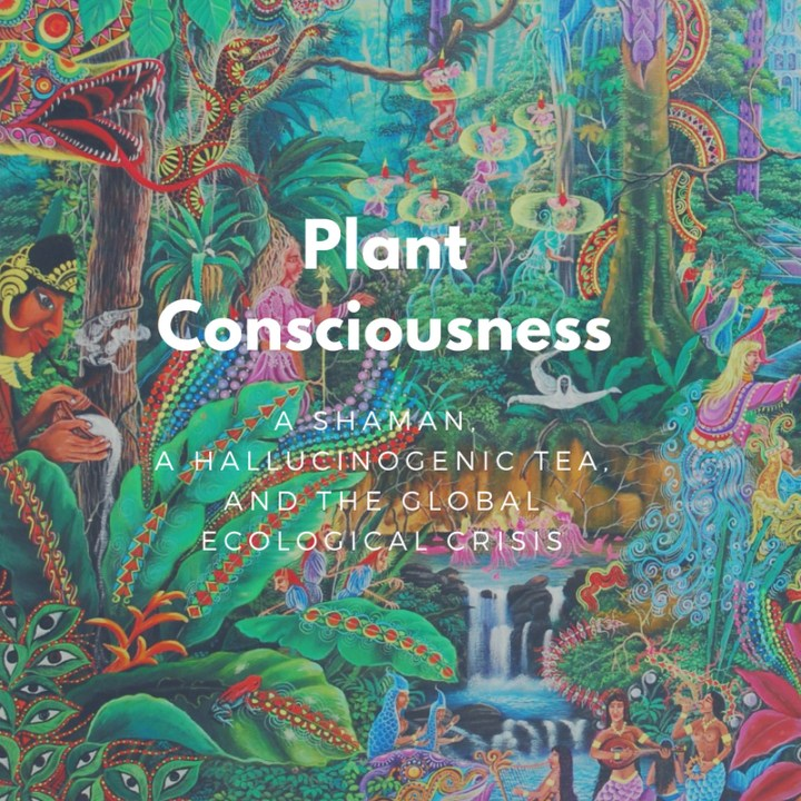 Plant consciousness: A shaman, a hallucinogenic tea, and the global ecological crisis