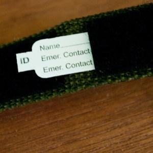Inside of ID Bracelet