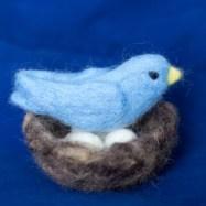 Blue bird and Nest