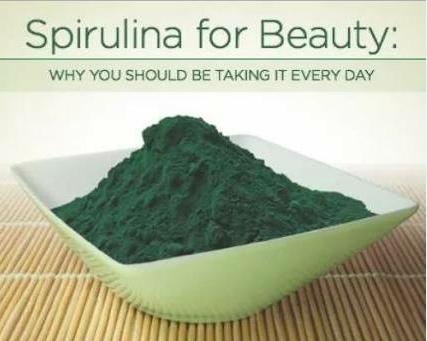 Jual Masker Spirulina Synergy Asli di Setia Budi WA 0838 0505 5353 untuk kecantikan