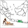 ahli pembuat lapangan Jawa Timur, pembuat lapangan basket, pembuat lapangan tenis