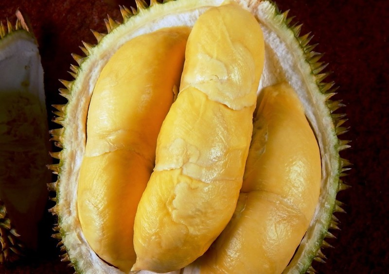 9 Jenis Durian Unggul Yang Paling Populer Dan Diburu Di Indonesia