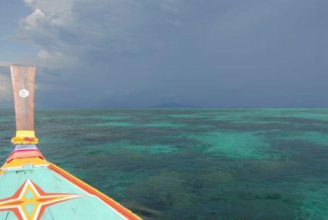 Phi Phi Coral Reef