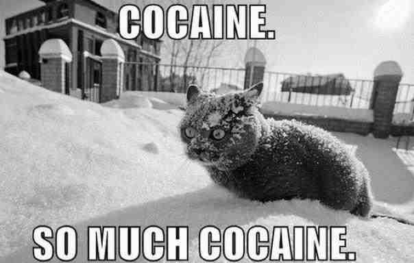 so-much-cocaine