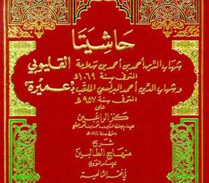 Mengenal lebih dekat Imam Qalyubi Pengarang Kitab Qalyubi