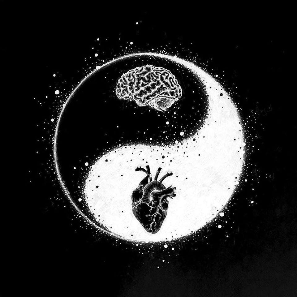 اليين واليانغ: كيفية عمل الأشياء في العلم الصيني القديم