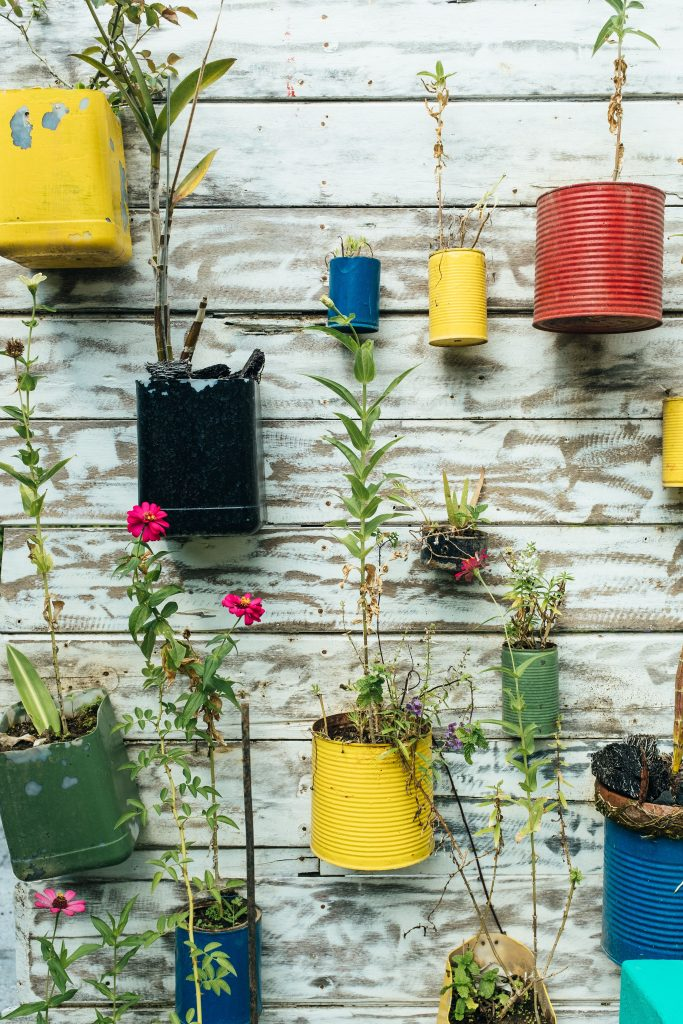 Indahnya Tanaman Gantung Model Urban Gardening Sederhana