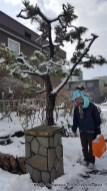 Menuju ke Ario Sapporo