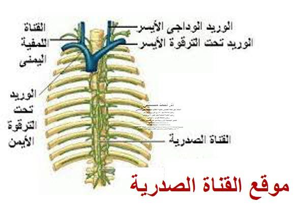 ارتشاح السائل الليمفاوي الصدري