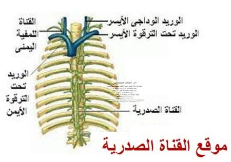 ارتشاح السائل الليمفاوى الصدري