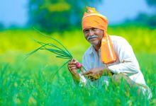 Photo of थकबाकीदारांसाठी एकरकमी कर्ज परतफेड योजना राबविणार; शेतकऱ्यांना मिळणार लाभ