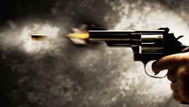 Photo of जनावरे चोरणाऱ्या चोरट्यांकडून गोळीबार; या ठिकाणी घडला धक्कादायक प्रकार