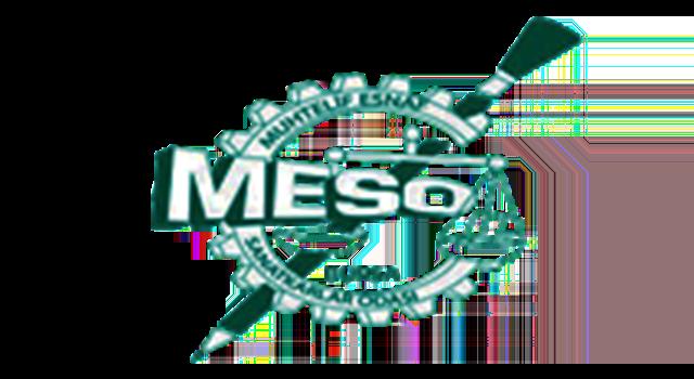 MESO LOGOSU
