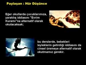 Evrim_ve_leylek