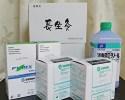 ディスポ鍼、パイオネックス、灸、消毒用エタノール