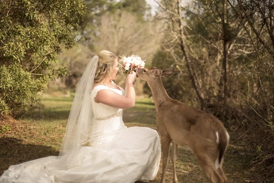 kisatchie butterfly garden deer bentley louisiana la bridals wedding photographer ahnvee photography