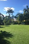 St. Kitts -Caribelle Batik