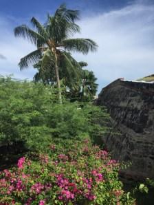 Castillo San Felipe de Barajas - Wehrmauer mit Palmen und Büschen