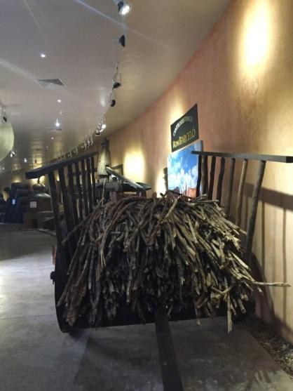 Rum Museum – Ron Barceló Historic Center - Zuckerrohr