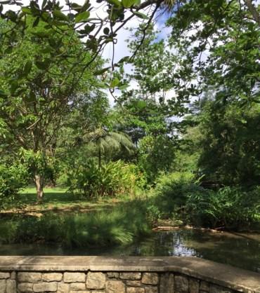 Frenchman's Cove - Botanischer Garten und Süßwassefluss