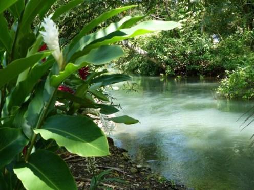 Frenchman's Cove - Süßwasserfluss