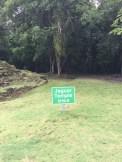 Informationstafel zum Jaguar Temple