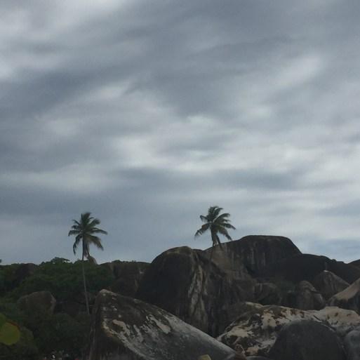 Insel Virgin Gorda bei The Bath - Steine und Palmen